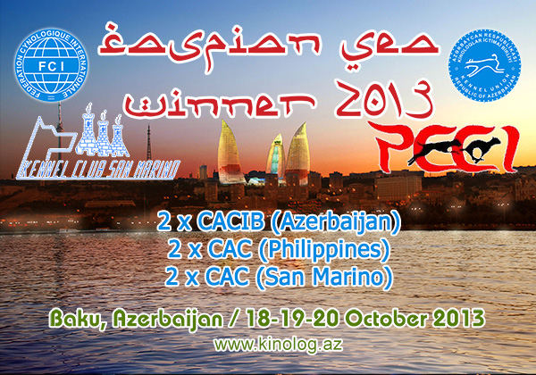 CASPIAN SEA WINNER-2013 Caspian_sea2013_banner1
