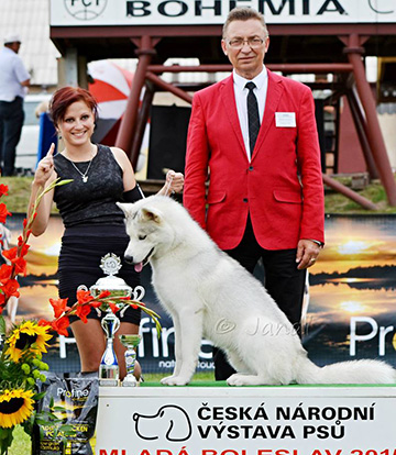 CAUCASIAN TROPHY 2016 INTERNATIONAL DOG SHOWS 2XCACIB 24-25 SEPTEMBER O_vondrous