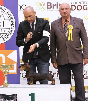 CAUCASIAN TROPHY 2016 INTERNATIONAL DOG SHOWS 2XCACIB 24-25 SEPTEMBER P_rehanek